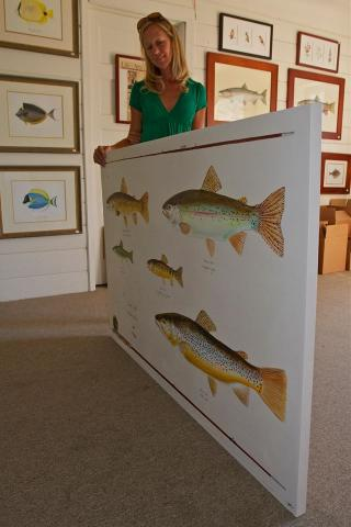 Karen Talbot calendar illustrations feature Maine's native sea-run fish