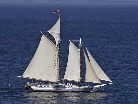 Win your own schooner