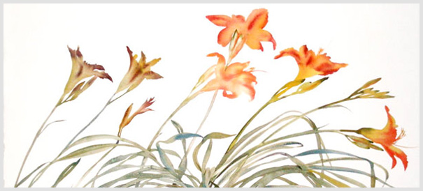 Daylillies, watercolor, 2008, by Susan Headley Van Campen