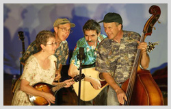Evergreen Bluegrass band